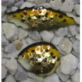 Walleye Spinner Blade